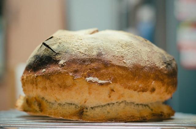 2016-01-16 Gina made sour dough bread