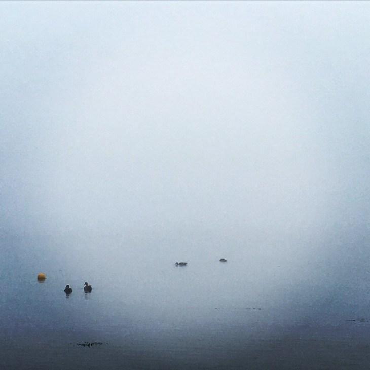 Some fog before the start
