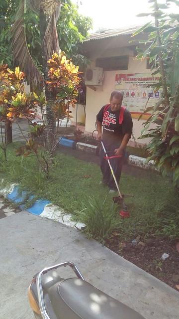 Pemotongan rumput ilalang di halaman KPU Kab.Tulungagung(8/4)