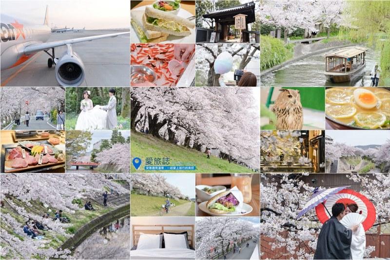 《京阪奈赏樱行程》2016关西赏樱行程总整理,11天冲刺各处樱花名所