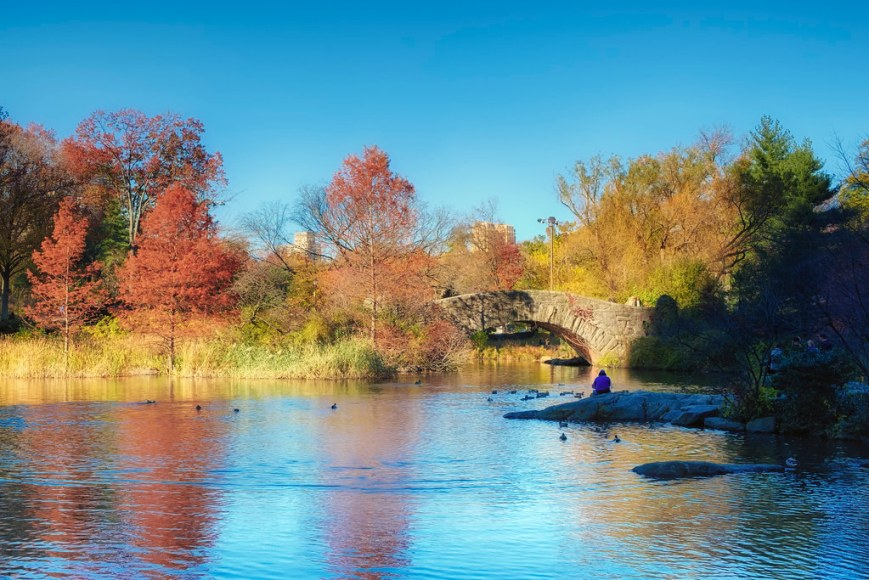 Central Park Pond and Gapstow Bridge