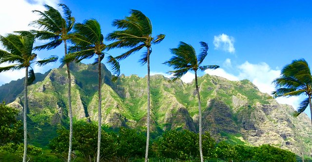 oahu-mountains