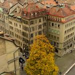 01 Viajefilos en Ginebra, Suiza 16