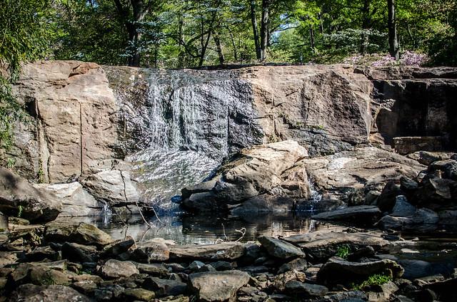 Rock Quarry Garden-005