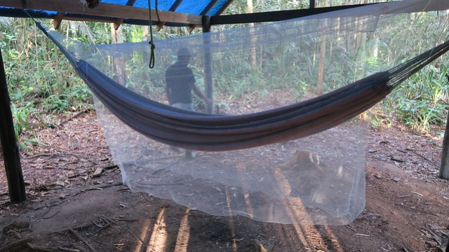 my hammock in the amazon rainforest for overnight camping