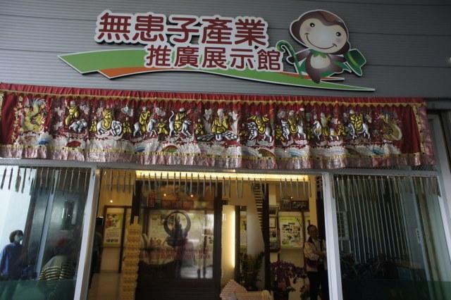 台南市安定區古寶無患子 (41)