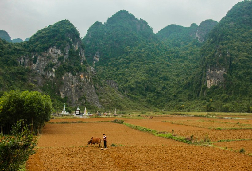 Phong Nha landsby