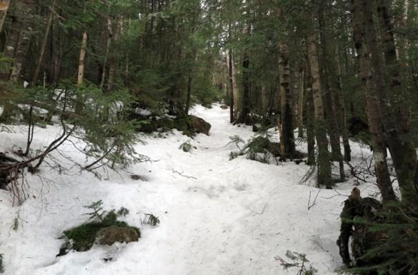 Gale River Trail Steep