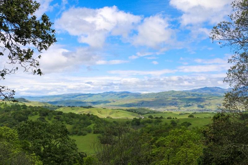 03.20. Calero County Park