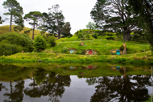 NZ_14-80