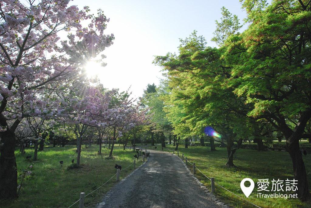 京都赏樱景点 元离宫二条城 38