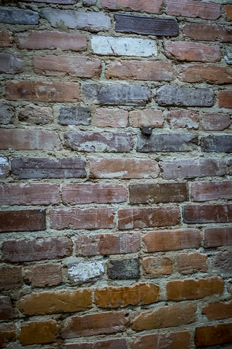 Exposed Bricks