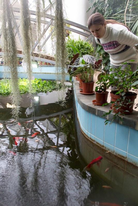 02.05. Conservatory at Minsk Botanical Garden
