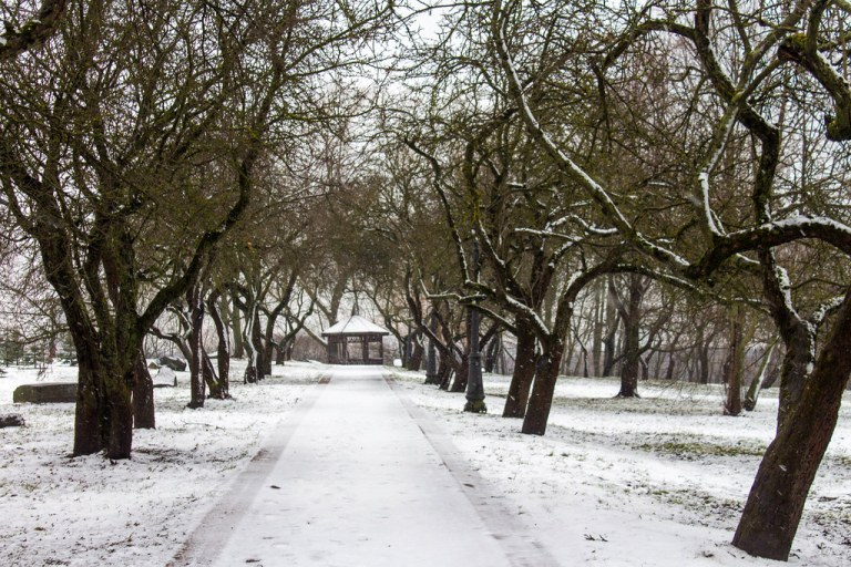 02.12. Minsk. Loshytsa Riverside Park