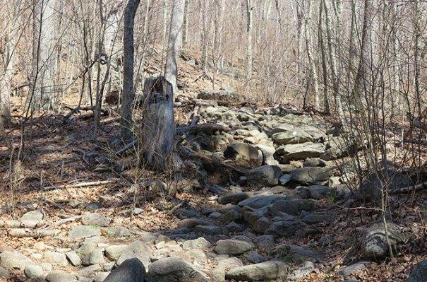 White Dot Trail Rocks
