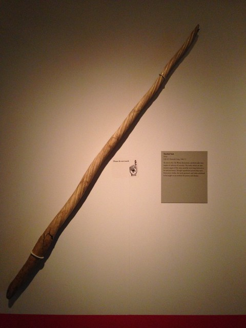 Narwhal Tusk, McClung Museum, Knoxville TN
