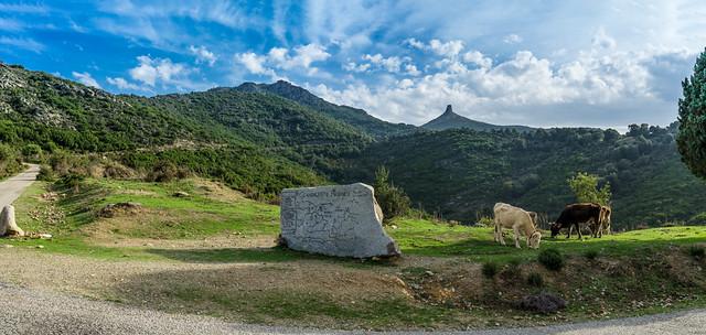 Landschaft am Monte Perda Liana