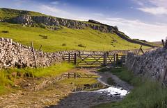 The field gate