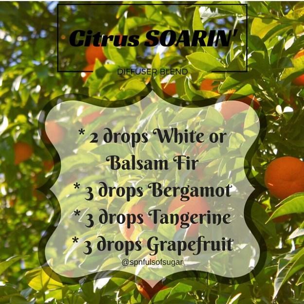 Citrus Soarin' Diffuser Blend
