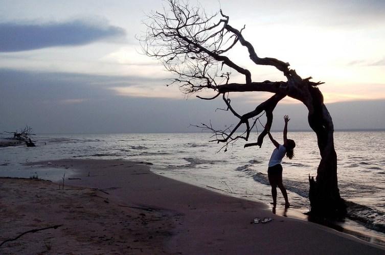 Olhar do leitor, de José Edibal Cabral. as margens do Rio Tapajós/Jamaraqua.