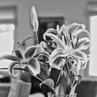 0327 - Flowers