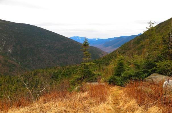 Galehead Hut View