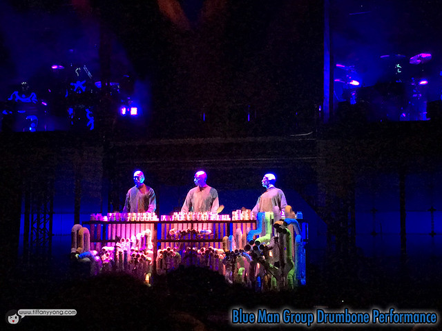 Blue Man Drumbone Performance