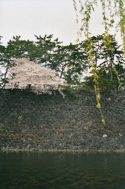 Kōkyo, Tōkyō