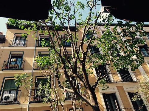 Primavera, Centro. Madrid