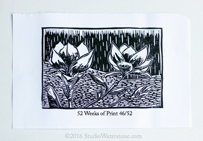52 Weeks of Print: 46/52 Saucer Magnolia