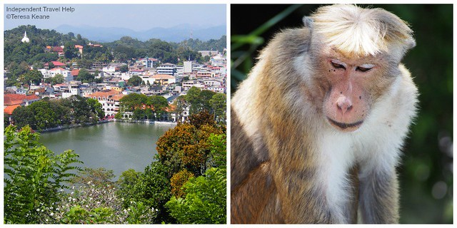 Viewpoint in Kandy
