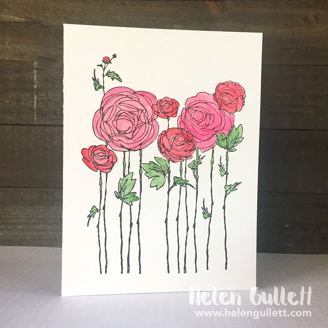 One Layer Card: Painted Sketched Ranunculus