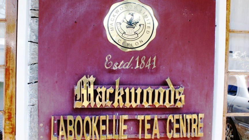 01 Mackwoods Tea Factory