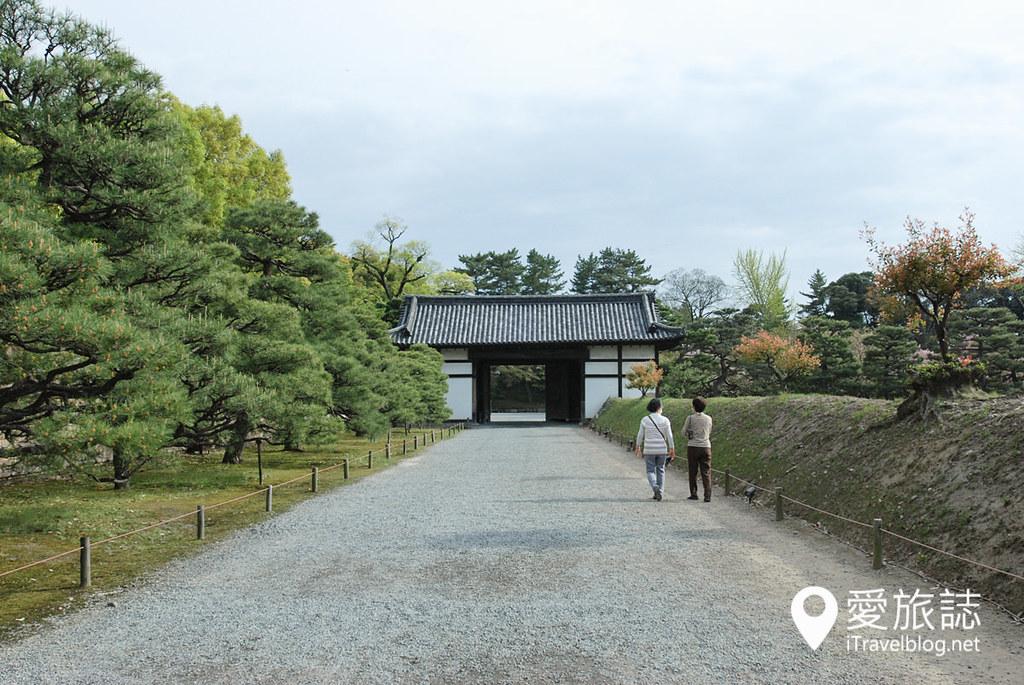 京都赏樱景点 元离宫二条城 14