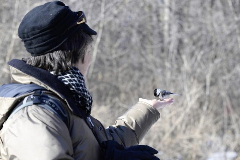 _DSC2793 Bird whisperer