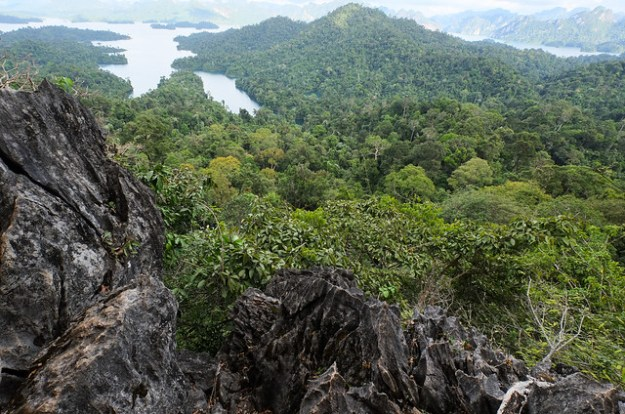 Limestone viewpoint. Khao Sok