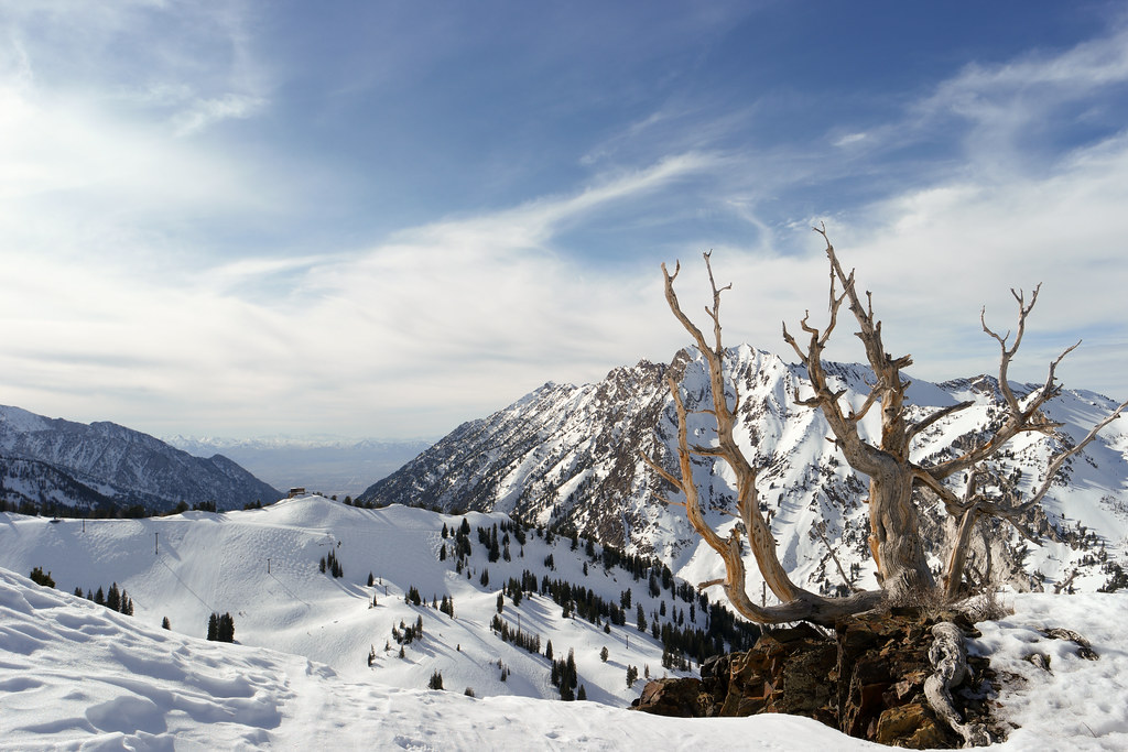 Alta ski resort