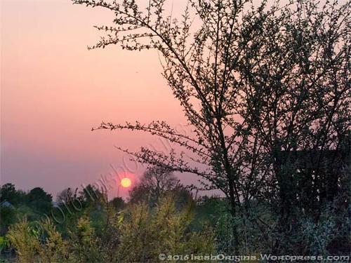 May Eve - Setting Sun