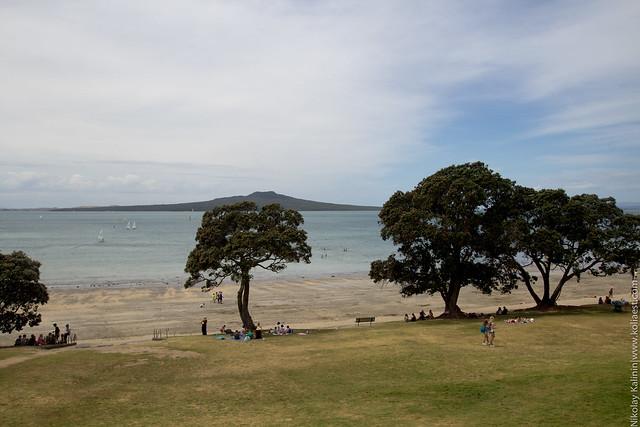NZ_18-38
