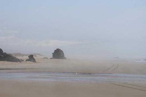 Oregon Coast and Sea Stacks-067