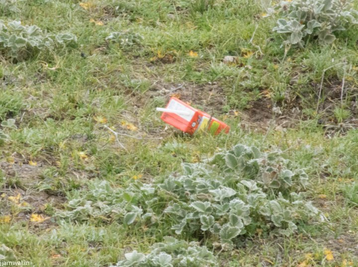 Trash like this comprising of food packaging, clothing, cans, alcohol bottles all around campsite