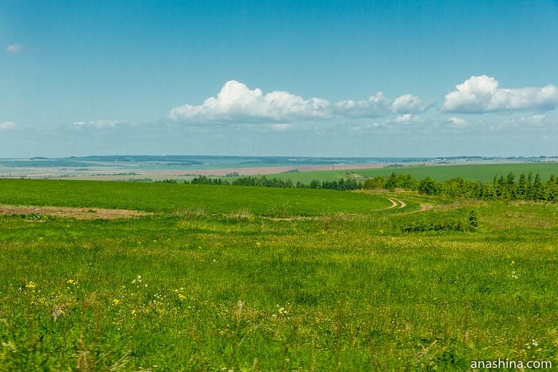 В окрестностях Юрьев-Польского, Владимирское ополье