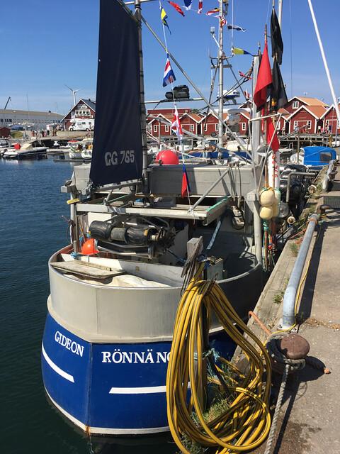 Havets_dag_ronnang - 49