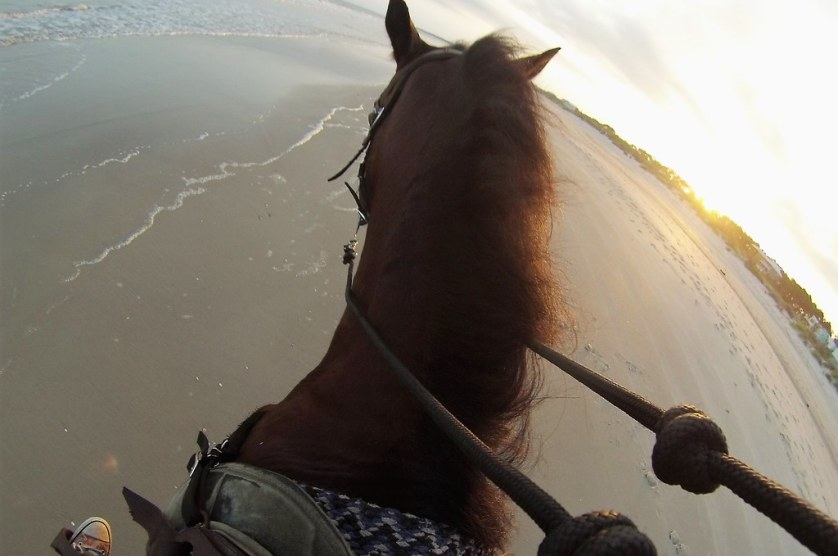 Golden Hour of Sunset While Riding Horseback on Cape San Blas, Fla., May 18, 2018.