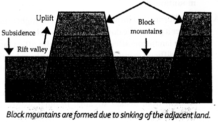 ICSE Solutions for Class 6 Geography Voyage - Major Landforms of the Earth 12.1