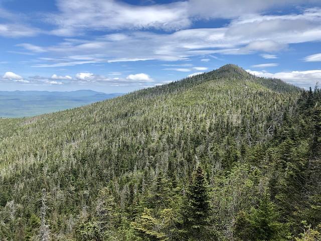 McKenzie Mountain