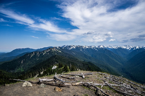 Hurricane Ridge Road in Olympics National Park-048