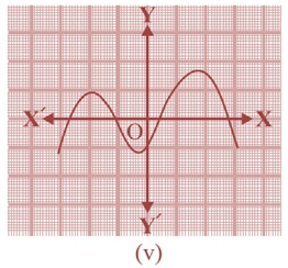 NCERT Solutions Of Maths For Class 10 Hindi Medium Chapter 2 Polynomial 2.1 5