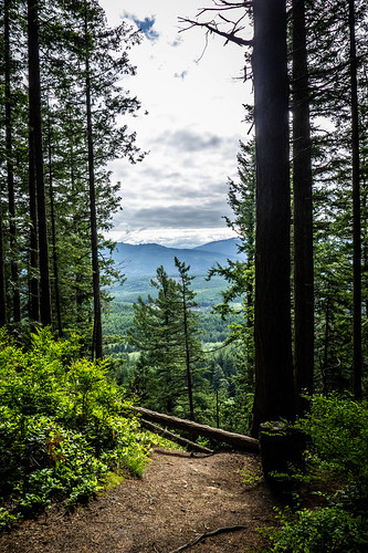 Chuckanut Ridge at Larabee State Park-014