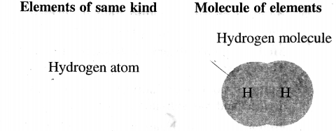 ICSE Solutions for Class 6 History and Civics - Atomic Structure-03
